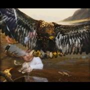 07-bald eagle-nh