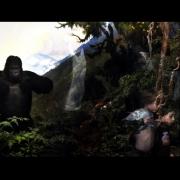 08-Gorilla-NH