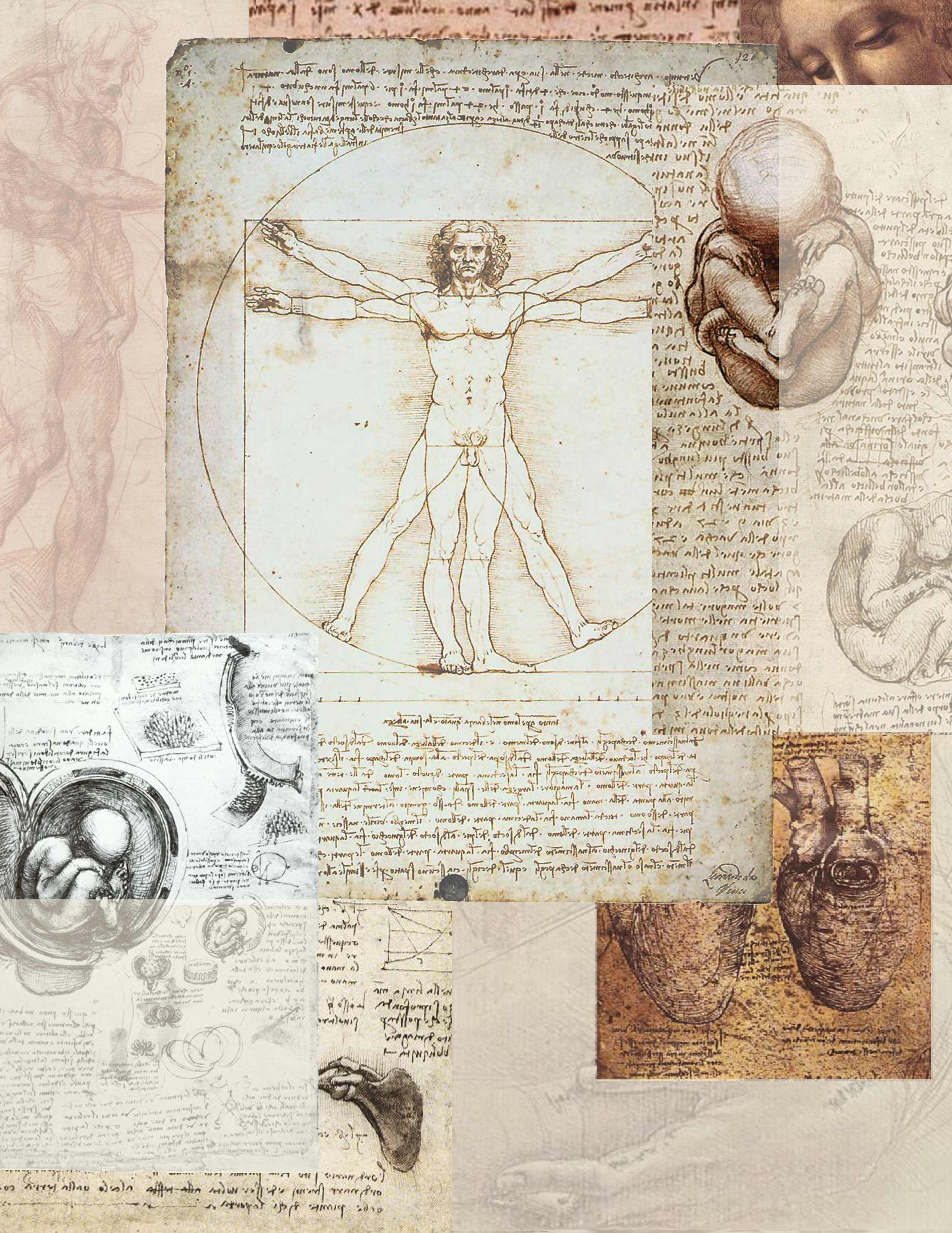 Graphic Art Inspired by Leonardo da Vinci's Notebooks