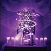Altar of Repose Maundy Thursday ©2000